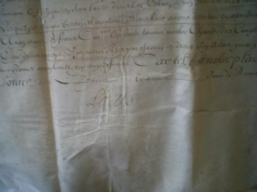 Louis XIV a apposé sa signature.jpg